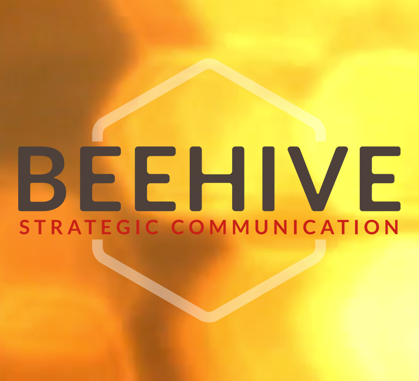 Beehive – International co-operation